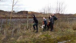 hedge-planting-at-the-brickponds-daniel-challenger